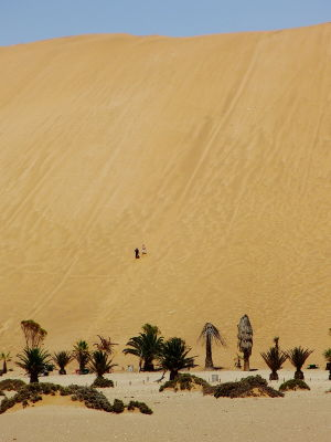 This is Dune 7, on of the highest in the area with about 140 meter in height.