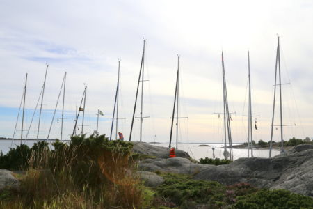 Bullero-aug-2013-21