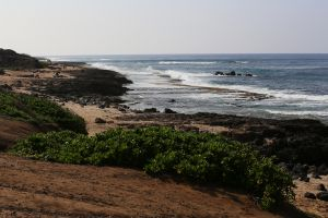 Hawaii-oahu13