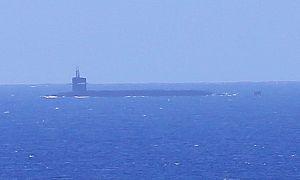 Hawaii-sub-closeup3
