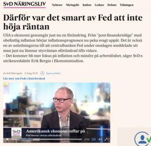 svd-fed-ekonomistudio