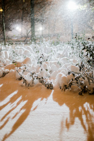 winterchaos-nyc-jan2016-7
