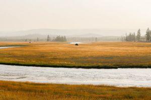 yellowstone1-aug2015-27