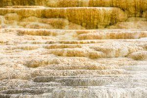 yellowstone3-aug2015-12